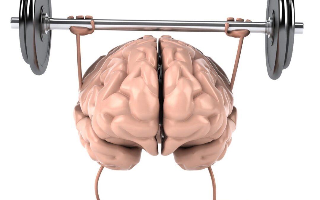 9 ways to improve your brain fitness