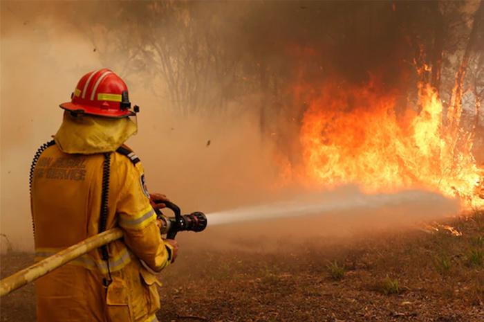 Bushfire relief from ATO obligations