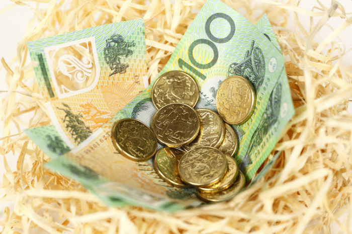 Nest with Australian dollar coins and one hundred dollar notes